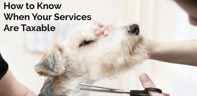 How to Know When Your Services Are Taxable