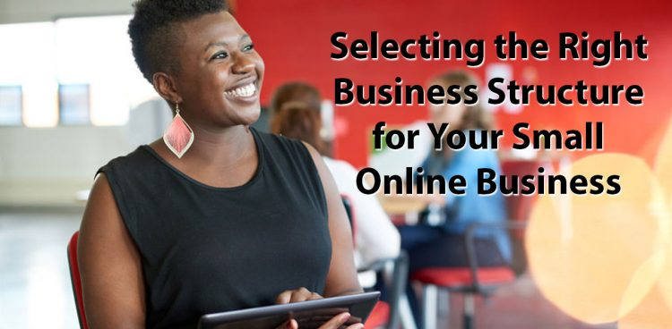 business structure for online small business